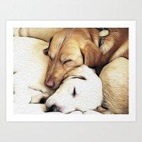 Let Sleeping Dogs Lie Art Print