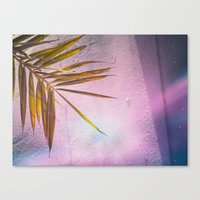PinkPalm Canvas Print