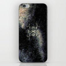 Qs11w iPhone & iPod Skin
