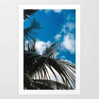 Sky behind the trees Art Print