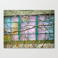 Backyard Abstract Canvas Print