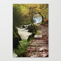 The Land of Elves Canvas Print