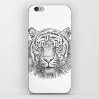 The Tiger's head iPhone & iPod Skin