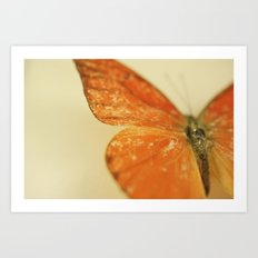Love is like a Butterfly.... Art Print