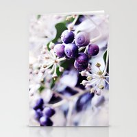 Vanilla Blue Stationery Cards
