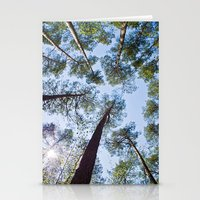 Sunny sky over the pines Stationery Cards