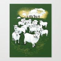Hide & Sheep Canvas Print