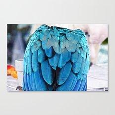 Parrot Life (2) Canvas Print