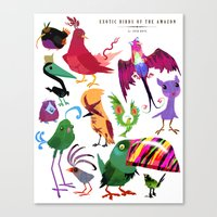 Exotic Birds of the Amazon series 1 collection Canvas Print
