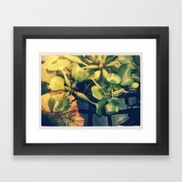 Green House I  Framed Art Print