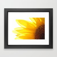 Sunflower 794 Framed Art Print
