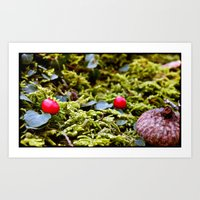 Tiny Forest Art Print