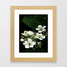 Fraises des bois Flowers Framed Art Print