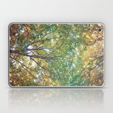 forest 014 Laptop & iPad Skin