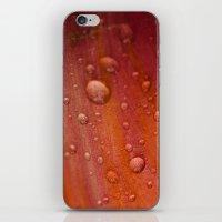 Dewdrops iPhone & iPod Skin