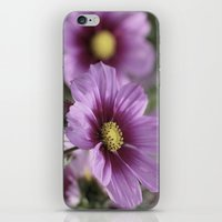 Enjoy the little things... iPhone & iPod Skin