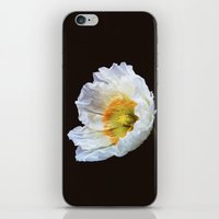 Papaver Nudicaule iPhone & iPod Skin