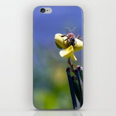 Bee on Yellow iPhone & iPod Skin