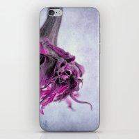 Breeze I iPhone & iPod Skin