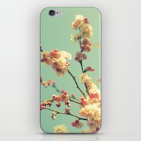 Spring memory iPhone & iPod Skin