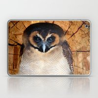 Asian Wood Owl Laptop & iPad Skin