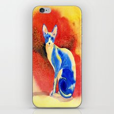 Sphynx Cat #3 iPhone & iPod Skin