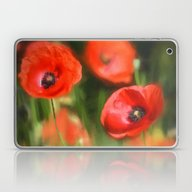 Warmth- Poppies In Love  Laptop & iPad Skin