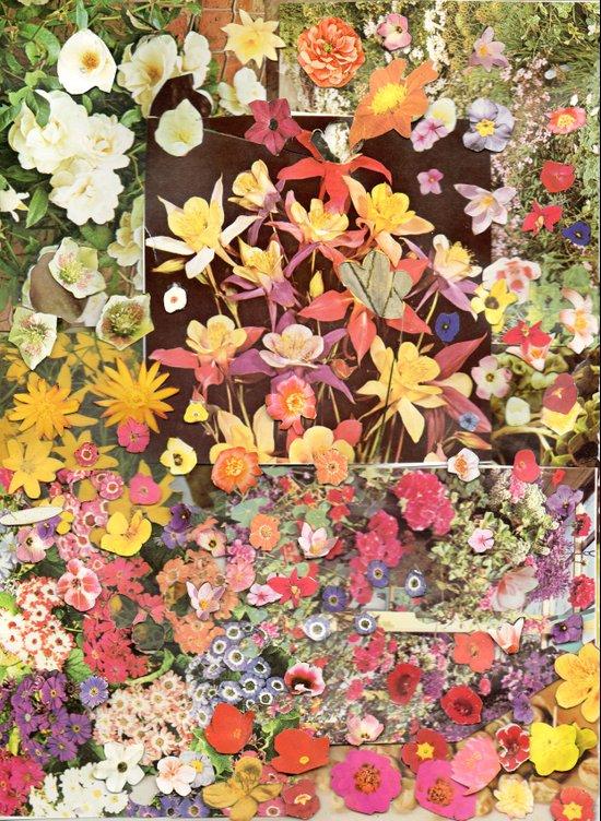 Flower Flower Flower Art Print