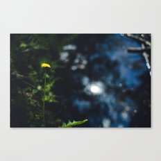 Reflection in the river Canvas Print