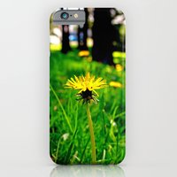 iPhone & iPod Case featuring Dandelion rising by Vorona Photography