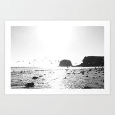 black and white big sur Art Print
