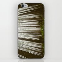 Rainforest Of The Pacifi… iPhone & iPod Skin