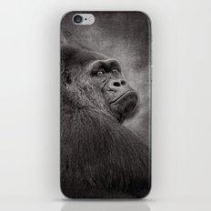 Gorilla. Silverback. BN iPhone & iPod Skin