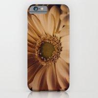 Antique Daisy iPhone 6 Slim Case