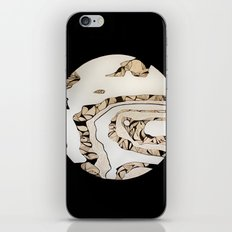 Europa iPhone & iPod Skin