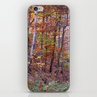 Autumn Colors II. Dream … iPhone & iPod Skin