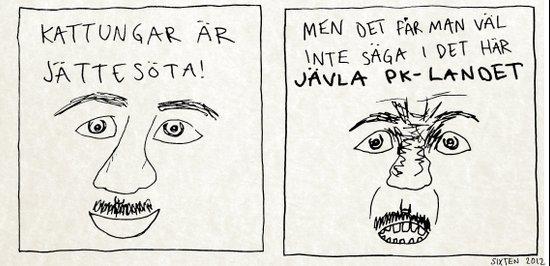 MEN DET FÅR MAN VÄL INTE SÄGA I DET HÄR JÄVLA PK-LANDET Art Print
