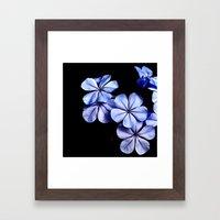 You Make My Flowers Blue Framed Art Print