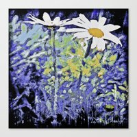Queens of the meadows Canvas Print