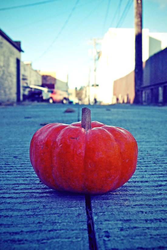 Urban alley pumpkin Art Print