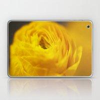 Golden Ranunculus Flowers Laptop & iPad Skin