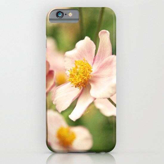 Japanese Anenomes in Pink and Green iPhone & iPod Case