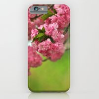 iPhone & iPod Case featuring Cherry Orchard by Rebecca A Sherman