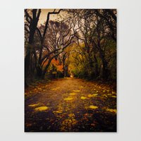 Canvas Print featuring Finding the Beauty in Hurricane Sandy. by Bjørn Svendsen