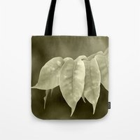 The curtain Tote Bag