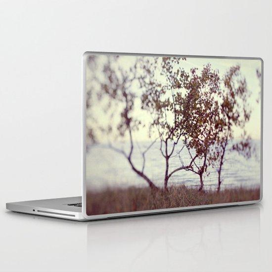 The Coast #2 Laptop & iPad Skin