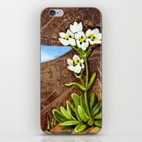High Country Gentian Flower iPhone & iPod Skin