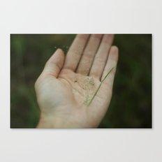 spider in hand Canvas Print