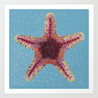 Sea Star 2 Art Print
