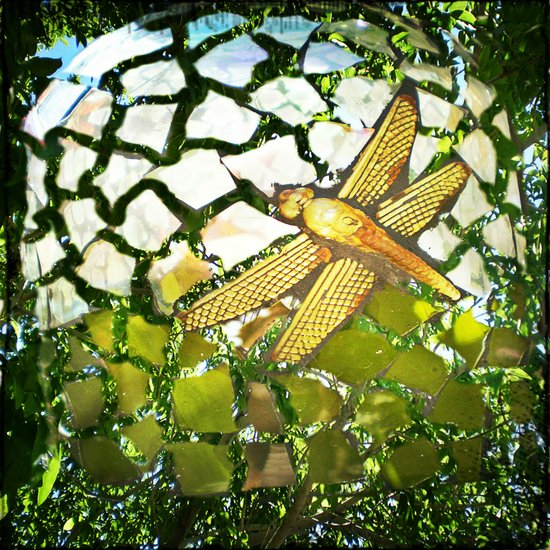 Fly High Dragonfly. Art Print